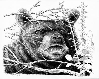 Black Bear Boar Art Print