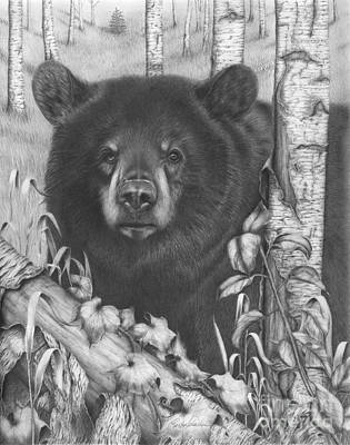Drawing - Black Bear On Newsome Creek by Barb Schacher