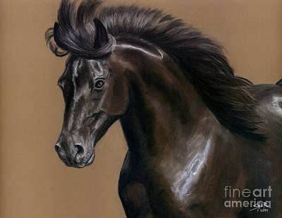 Black Beauty Art Print by Sheri Gordon