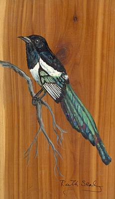 Painting - Black Billed Magpie by Ruth Seal