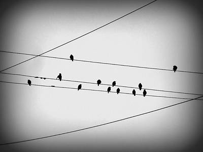 Black Birds Waiting Art Print