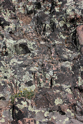 Photograph - Black Canyon Rock 2 by Mary Bedy