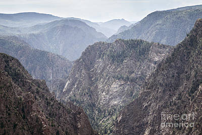 Photograph - Black Canyon View by Dennis Hedberg