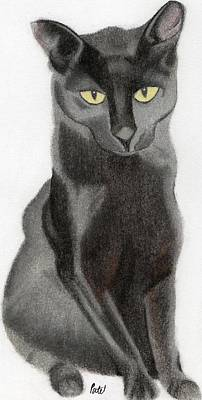 Pastel - Black Cat by Bav Patel
