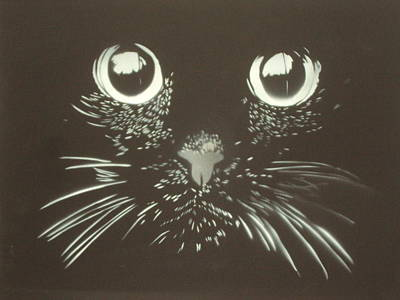 Black Cat Art Print by Christopher Golding