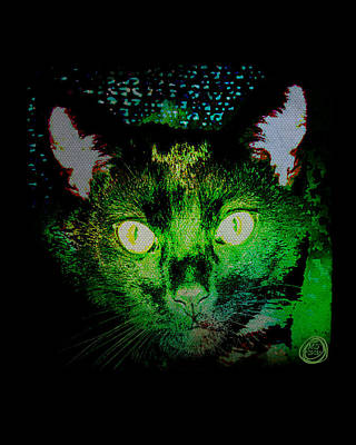 Digital Art - Black Cat Night Vision by Absinthe Art By Michelle LeAnn Scott