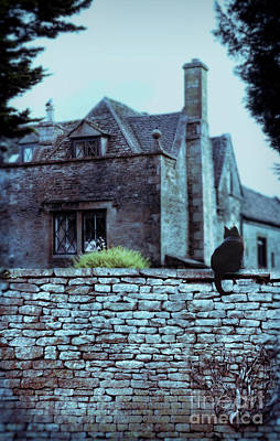 Photograph - Black Cat On A Stone Wall By House by Jill Battaglia