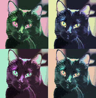 Digital Art - Black Cat Pop Art 2 by Susan Stone