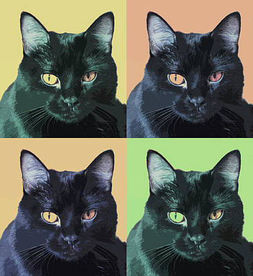 Photograph - Black Cat Pop  Art by Susan Stone