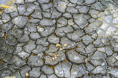 Photograph - Black Cracked Earth by Patricia Hofmeester