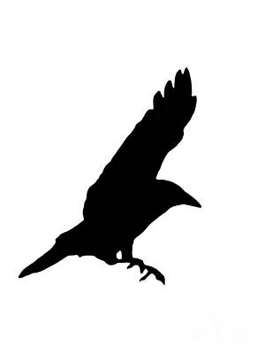 Crow In Flight Digital Art - Black Crow On White by Linsey Williams
