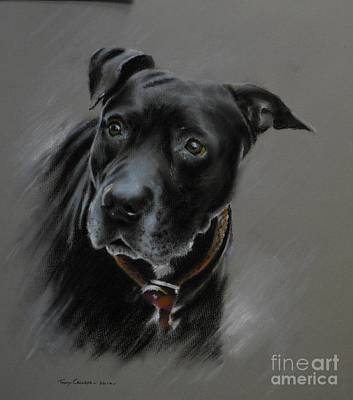 Pastel - Black Dog by Tony Calleja