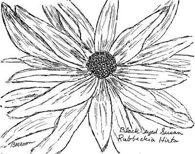 Daisy Drawing - Black-eyed Susan by Becky Mason