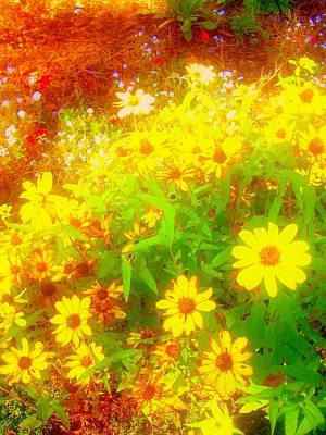 Digital Art - 'black-eyed Susan Field'  by Liza Dey