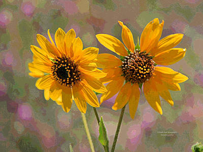 Photograph - Black-eyed Susan by Matalyn Gardner