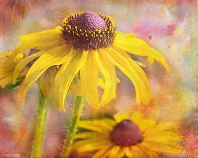 Artography Photograph - Black-eyed Susan by Melissa Bittinger