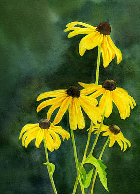 Black Eyed Susan Painting - Black Eyed Susans Dark Background 2 by Sharon Freeman