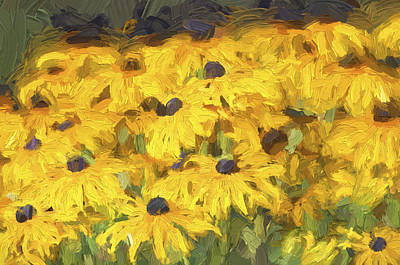 Photograph - Black Eyed Susans Digital Oil Painting 2 by Sharon Talson