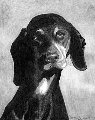Black Forest Hound Dog Portrait  Art Print by Olde Time  Mercantile