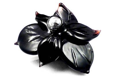 Lampwork Photograph - Black Glass Flower by Anne Londez