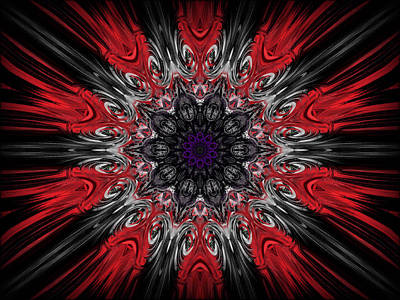 Digital Art - Black Hawk by Michael Damiani