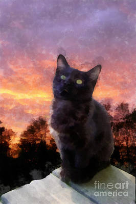 Black Kitten Watercolor Original by Betsy Cotton