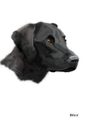 Retrievers Digital Art - Black Lab A by Bob Donner
