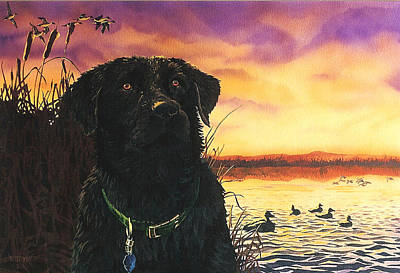 Black Lab Art Print