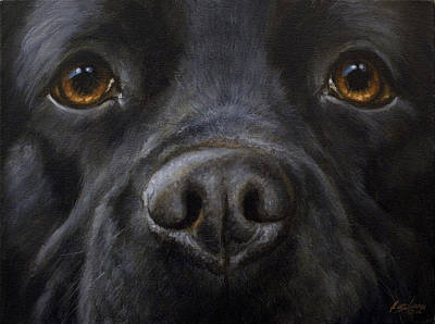 Charcoal Landscape Drawings Painting - Black Labrador Close Up by John Silver