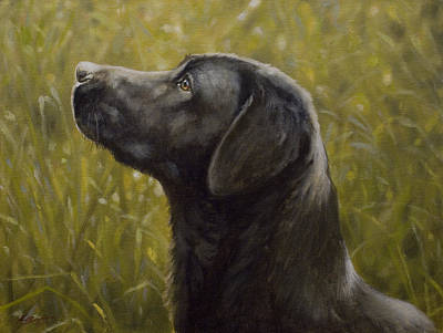 Charcoal Landscape Drawings Painting - Black Labrador Portrait I by John Silver