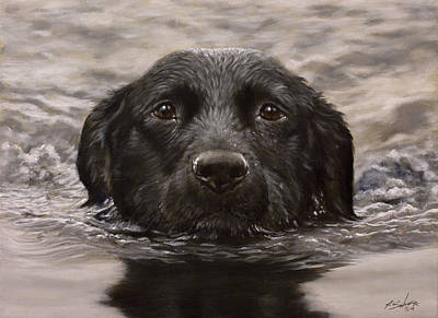 Charcoal Landscape Drawings Painting - Black Labrador Portrait II by John Silver