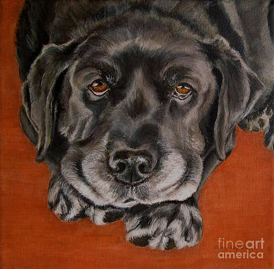 Painting - Black Labrador Rests Head Rescue Dog by Amy Reges