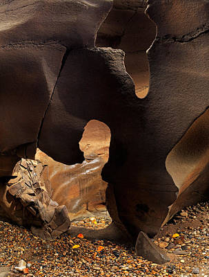 Photograph - Black Magic Canyon Shape by Leland D Howard