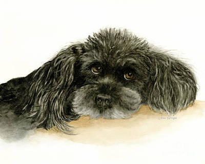 Painting - Black Poodle Dog by Nan Wright