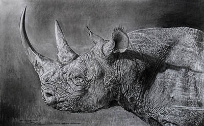 Black Rhino At Sunset. Original by Ian Cuming