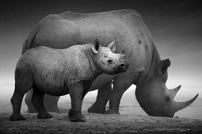 Sepia Photograph - Black Rhinoceros Baby And Cow by Johan Swanepoel