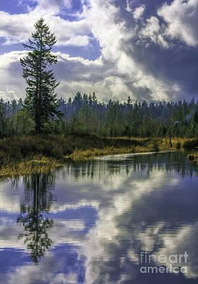 Photograph - Black River Beauty by Jean OKeeffe Macro Abundance Art