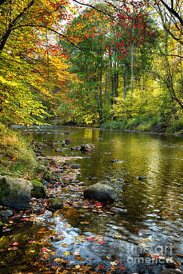 Fallen Leaf Photograph - Black River Fall Scenic In New Jersey by George Oze