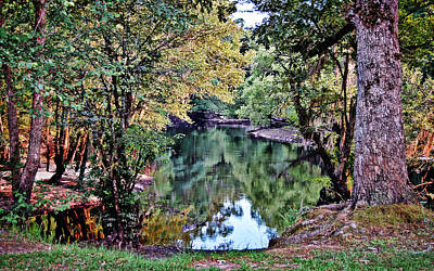 Art Print featuring the photograph Black River Reflections by Linda Brown