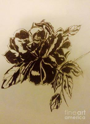 Indian Ink Mixed Media - Black Rose by Franky A HICKS