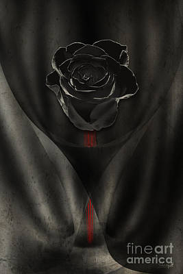 Digital Art - Black Rose In Dark by Johnny Hildingsson