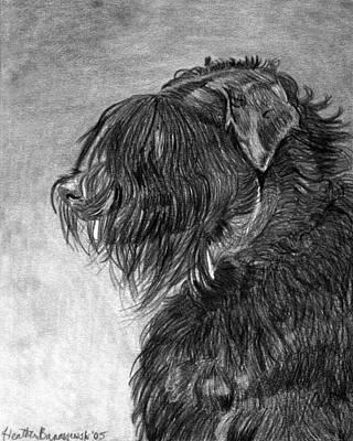 Black Russian Terrier Dog Portrait  Art Print by Olde Time  Mercantile