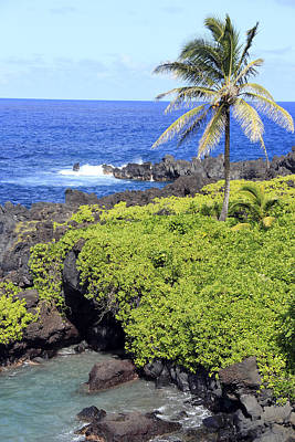 Black Sand Beach Lookout Park Art Print