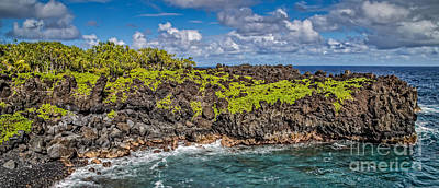 Kunst Photograph - Black Sand Beach Maui Hawaii by Edward Fielding