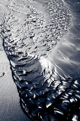 Photograph - Black Sand Scales by Anthony Doudt