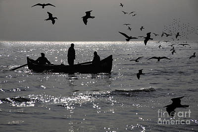 Photograph - Black Sea Coast And Birds Flying by Daliana Pacuraru