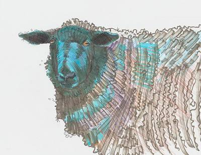 Drawing - Black Sheep by Mike Jory