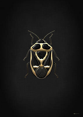 Digital Art - Black Shieldbug With Gold Accents On Black Canvas by Serge Averbukh
