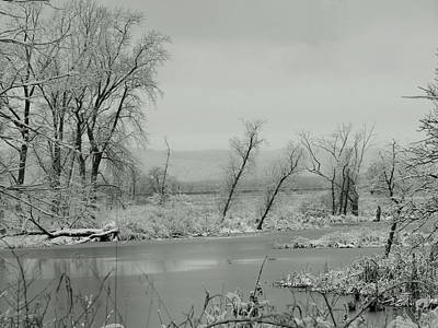 Photograph - Black Snow Swamp by Wild Thing