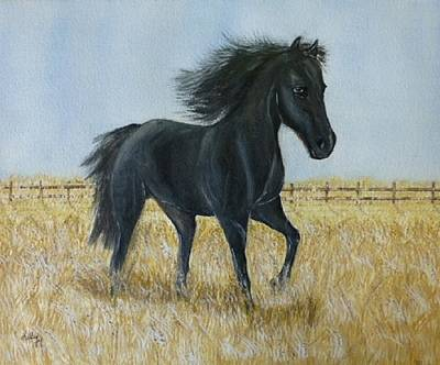 Painting - Black Stallion Trot by Kelly Mills